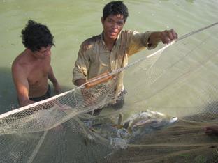 Pesca Sri Lanka
